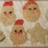 Santa Cookie Storage